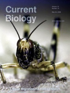 CurrentBiologyCover